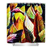 Crotons Sunlit 2 Shower Curtain