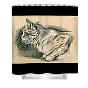 Crouching Tabby Shower Curtain by MM Anderson