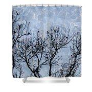 Crow Counting  Shower Curtain
