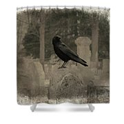 Crow In The Old Graveyard Mix Shower Curtain