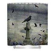 Crow Keeps Her Perch Shower Curtain