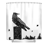Crow On Fence Post Shower Curtain