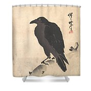 Crow Resting On Wood Trunk Shower Curtain