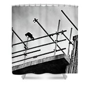 Crow Watches Over Shower Curtain