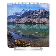 Crowfoot Reflection Shower Curtain