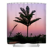 Crown In Pink Sky Shower Curtain