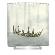 Crown In The Snow Shower Curtain
