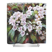 Crown Of The Forest Shower Curtain