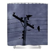 Crows And A Crescent Moon Shower Curtain