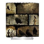 Crows And One Rabbit Shower Curtain