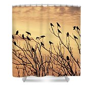 Crows In Their Twitter Cloud. Shower Curtain