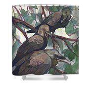 Crows Shower Curtain