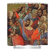 Crucifixion Fragment 1311  Shower Curtain