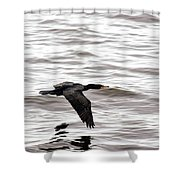 Cruising Cormorant Shower Curtain