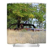 Cruising The  Weeds Shower Curtain