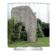 Crumbling Arch Shower Curtain