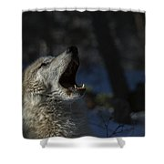 Cry In The Wild Shower Curtain