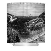 Crying Seagull Black And White Shower Curtain