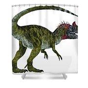 Cryolophosaurus Dinosaur Tail Shower Curtain