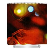 Crystal Ball Project 25 Shower Curtain