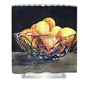 Crystal Bowl With Fruit Shower Curtain