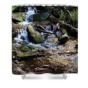 Crystal Clear Creek Shower Curtain