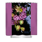 Crystal Earbobs 2 Shower Curtain