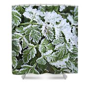 Crystal Leaves Shower Curtain