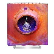 Crystal Light Shower Curtain