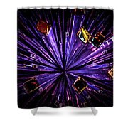 Crystal Reports Shower Curtain