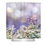 Crystal Silence Shower Curtain