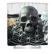Crystal Skulls Michelangelo, Jesus And Xenia Shower Curtain
