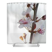 Crystal Sprout Shower Curtain