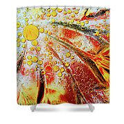 Crystal Sunburst Shower Curtain