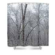 Crystal Woods Shower Curtain