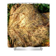 Crystaline Pure Shower Curtain