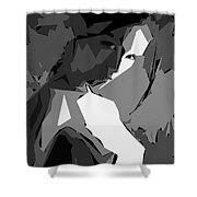 Cubism Series Xv Shower Curtain