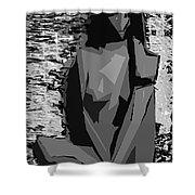 Cubism Series Xvii Shower Curtain