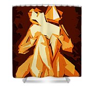 Cubism Series Xxii Shower Curtain