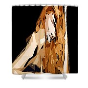 Cubism Series Xxiv Shower Curtain