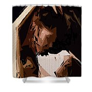 Cubism Series Xxv Shower Curtain