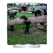 Cubs At The Playground Shower Curtain