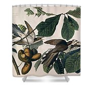 Cuckoo Shower Curtain