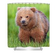 Cuddly Bear Cub Shower Curtain