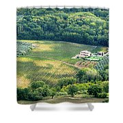 Cultivated Vineyards Tuscany  Italy Shower Curtain