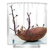 Cultivation On A Sweet Potato Shower Curtain