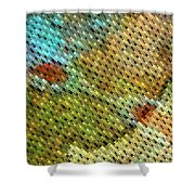 Curb Appeal I Shower Curtain