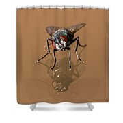 Curiosity At Its Best Shower Curtain