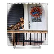 Curious Bengal Cat Shower Curtain