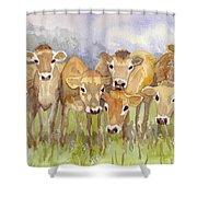 Curious Calves Shower Curtain